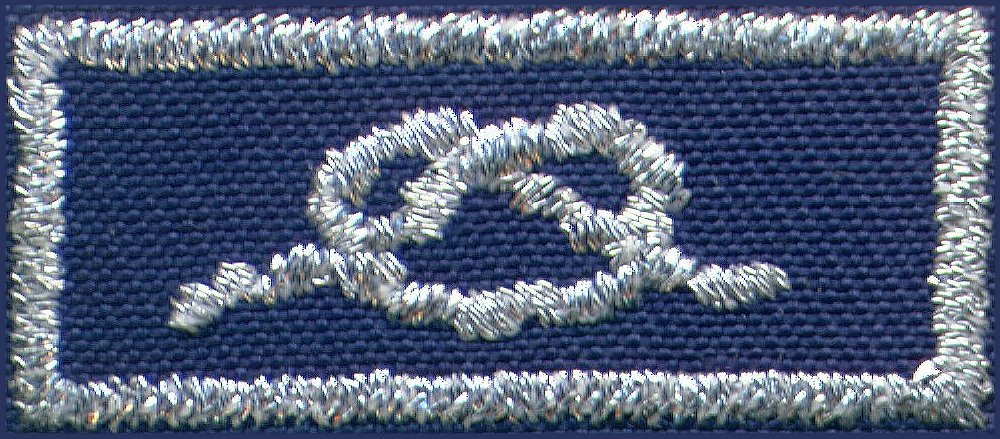 http://www.scoutingbsa.org/_Images/Scout_Knots_and_Medals/Knot_Scans/District_Award_of_Merit.jpg